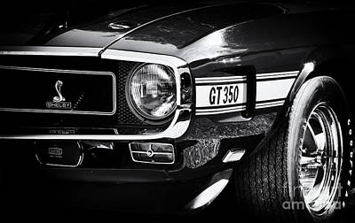 Street Car Photograph -  Shelby Gt350 by Tim Gainey