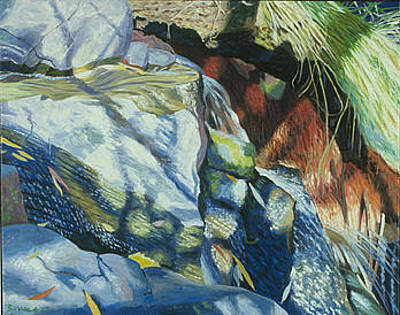 Richard Diebenkorn Painting -  Small Cascades And  Branch Shadows  by James Burpee
