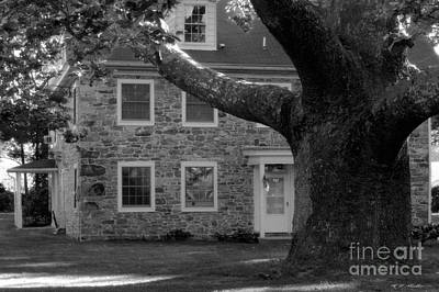 Stone House And A Large Sycamore Tree Art Print by Heinz G Mielke