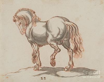 Study Of A Horse Art Print by MotionAge Designs