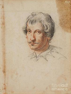 Flemish School Painting -  Study Of A Male Head by Celestial Images