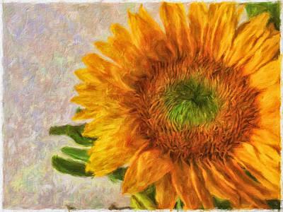 Mixed Media -  Sunflower 2 by Jonathan Nguyen