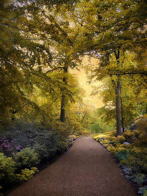 Golden Digital Art -  The Golden Walkway by Jessica Jenney