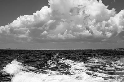 Photograph -  The Gulf Of Mexico Bw by Debra Forand
