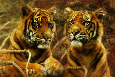 Tiger Cub Digital Art -  Warriors Of Wonder by Trudi Simmonds