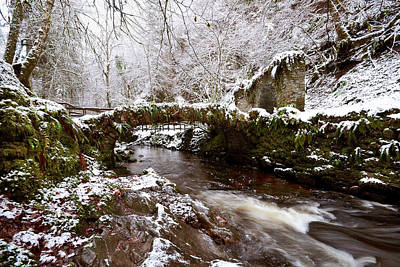 Photograph -  Winter At Reelig by Gavin Macrae