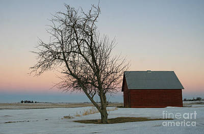 Photograph -  Winter In Rural America by Paula Guttilla