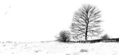 Park Scene Digital Art -  Winters Grip At Bradgate Park by Linsey Williams