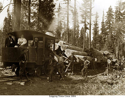 Photograph - 0-4-2 Logging Train 1894 by California Views Mr Pat Hathaway Archives