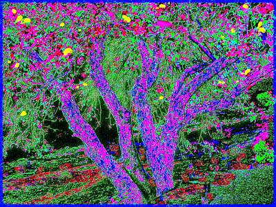 007h  Abstract Arcadia Tree Art Print by Ed Immar