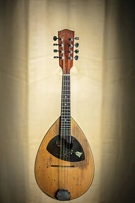 Photograph - 01.1845 Framus Mandolin by M K  Miller