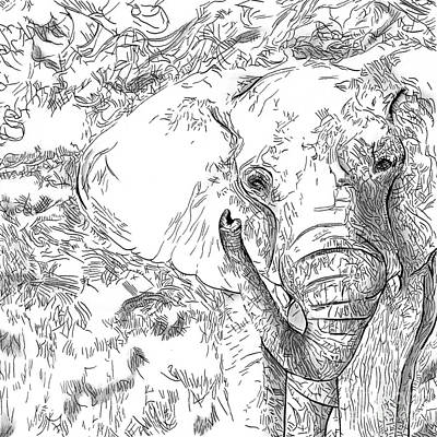 Drawing - 02 Of 30 Elephant by Denise Deiloh