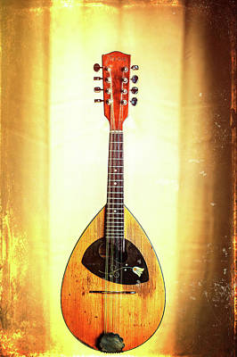 Photograph - 02.1845 Framus Mandolin by M K  Miller