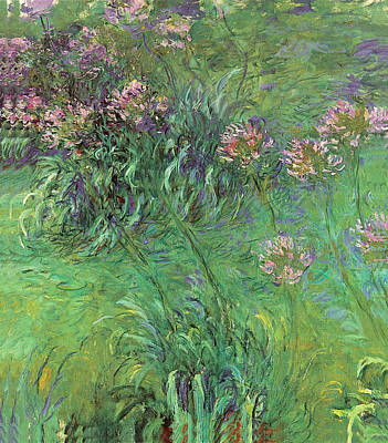 Painting - Agapanthes Blue Waterlilies by Claude Monet