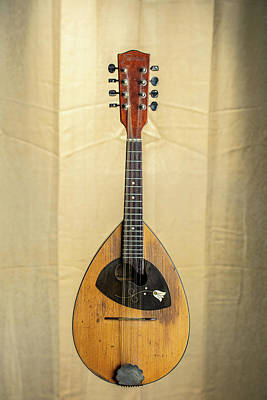 Photograph - 03.1845 Framus Mandolin by M K  Miller