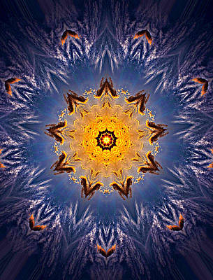 Kaleidoscope Photograph - 032 by Phil Koch