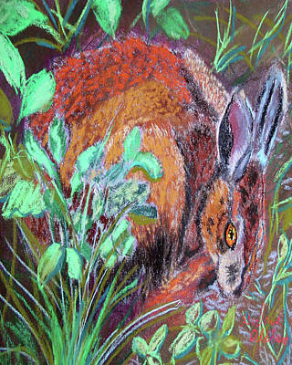 Pastel - 032917louisiana Swamp Rabbit by Garland Oldham