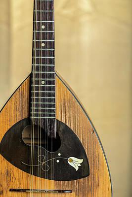 Photograph - 04.1845 Framus Mandolin by M K Miller