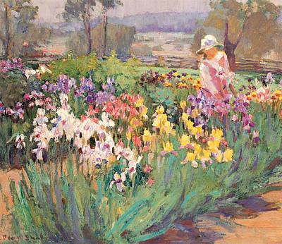 Ada Painting - Iris Garden by Ada Walter Shulz