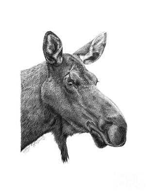 048 - Shelly The Moose Art Print