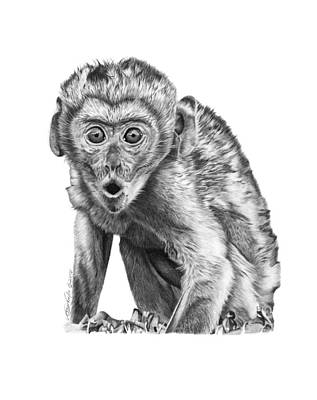 Drawing - 057 Madhula The Monkey by Abbey Noelle