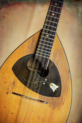 Photograph - 08.1845 Framus Mandolin by M K  Miller