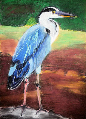 Painting - 08282016 Female Blue Heron by Garland Oldham