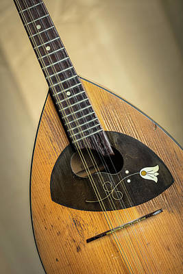 Photograph - 09.1845 Framus Mandolin by M K  Miller
