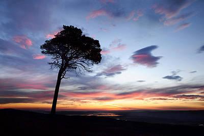 Photograph -  Beauly Firth Sunrise by Gavin Macrae