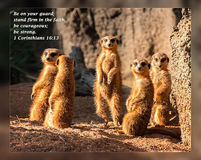 Photograph - 1 Corinthians 16 13 by Dawn Currie