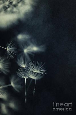 Velvet Digital Art - Splatters Of Blue 1 by Priska Wettstein