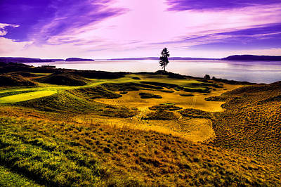 Photograph - #15 At Chambers Bay Golf Course by David Patterson