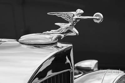 Photograph - 1934 Packard by Dennis Hedberg