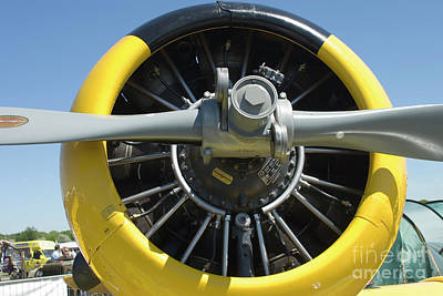 Harvard Propeller Photograph - 1940's Harvard Plane by Theodore Liasi