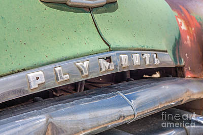 Photograph - 1950 Plymouth by Tony Baca