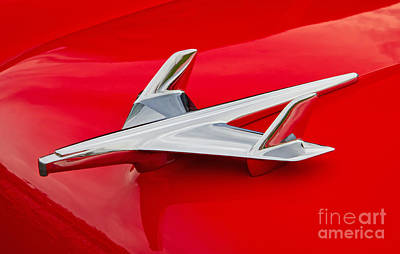 Photograph - 1955 Chevrolet Hood Ornament by Kevin McCarthy