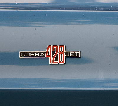 Photograph - 1968 Shelby Gt500 by Dean Ferreira