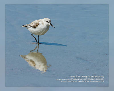 Photograph - 2 Corinthians 12 9 by Dawn Currie