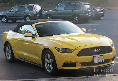 Photograph - 2017 Ford Mustang by Rod Jones