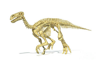 3d Rendering Of An Iguanodon Dinosaur Art Print by Leonello Calvetti