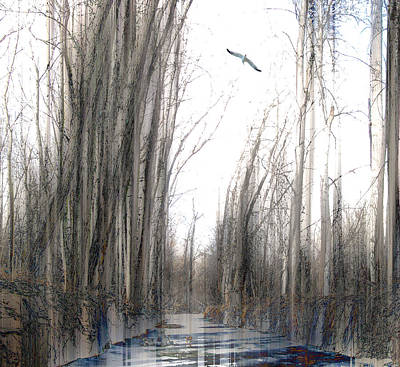 Photograph - 4088 by Peter Holme III