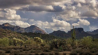 Photograph - A Beautiful Desert Day  by Saija Lehtonen