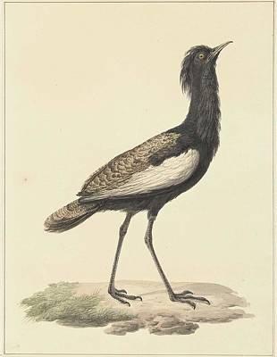 Bird On The Ground Painting - A Bird Standing On The Ground by Pieter Pietersz