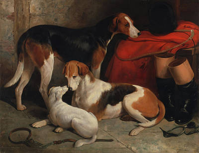 Painting - A Couple Of Foxhounds With A Terrier by William Barraud