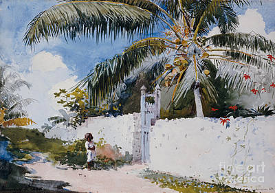 Outside Painting - A Garden In Nassau by Winslow Homer