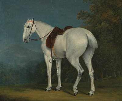 Painting - A Lady's Grey Hunter by Treasury Classics Art
