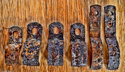 Photograph - A Little Rusty Line Up 1 by Debbie Portwood