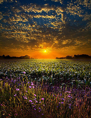 Field. Cloud Photograph - A New Day by Phil Koch