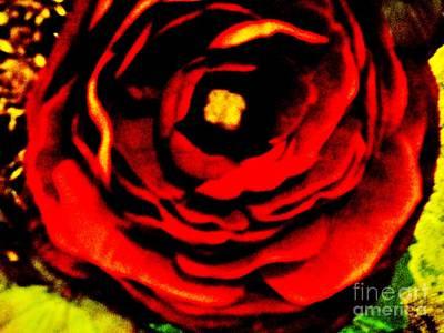Wrap Digital Art - A Rose Is A Rose by Marsha Heiken