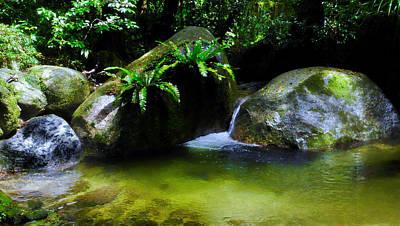 Photograph - A Secret Space - Mossman Gorge, Far North Queensland, Australia by Lexa Harpell